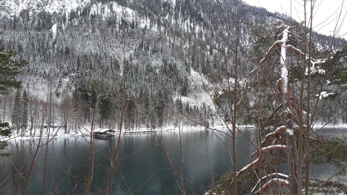 Альпийское озеро в Швангау / фото Марина Григоренко