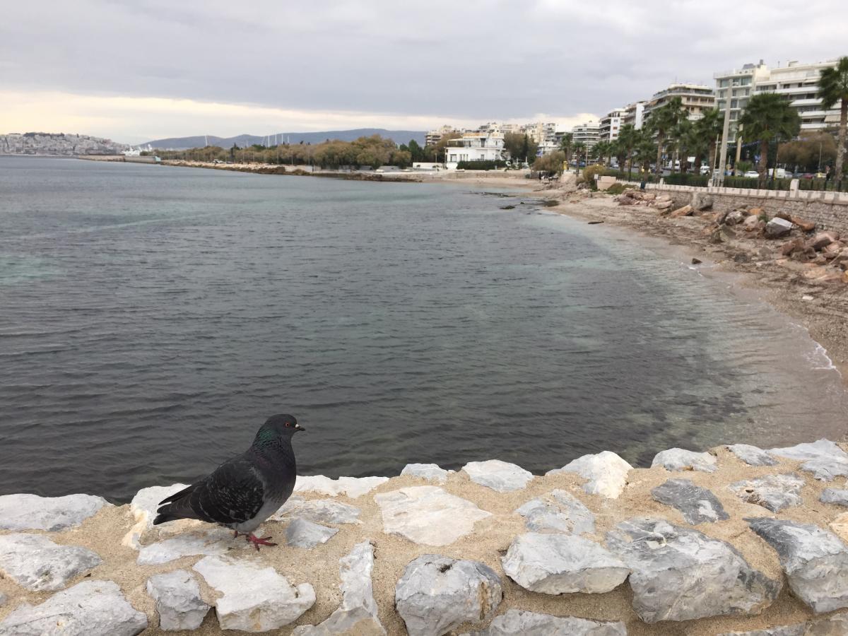 Пляжей здесь практически нет. А вне сезона нет и туристов / фото Маргарита Андреева