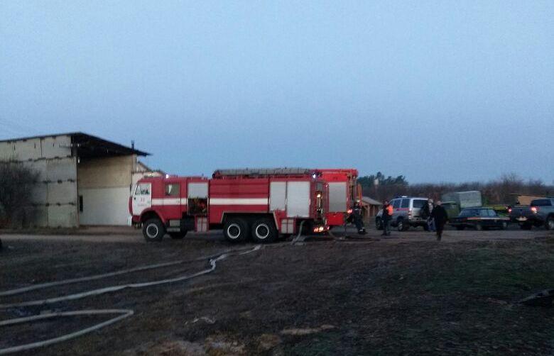 У пожежі загинули чотири коні / kyivobl.dsns.gov.ua