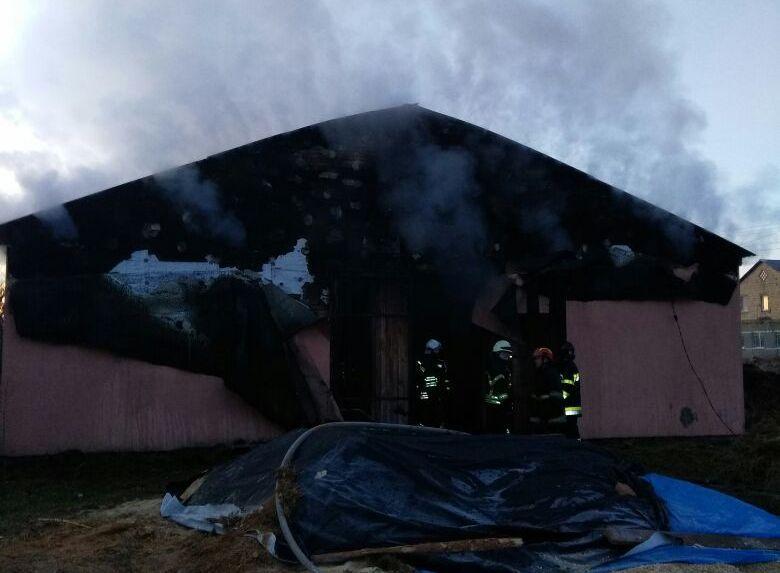 Під Києвом у вогні живцем згоріли коні / kyivobl.dsns.gov.ua