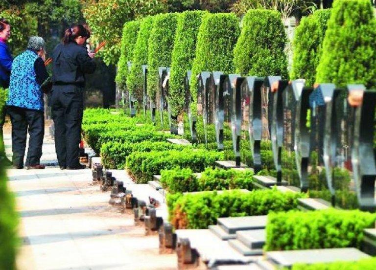 Зелене поховання стає популярним в індустрії похорону / funeral.com