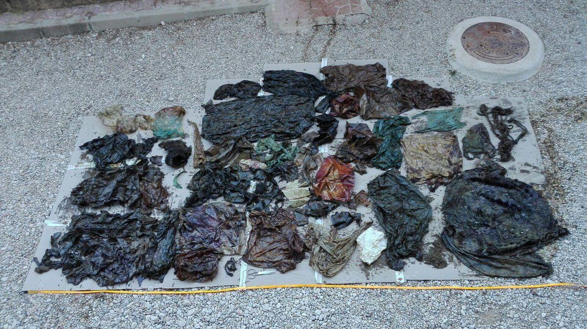В желудке кита обнаружили 29 кг пластика / фото twitter.com/espnaturalesmur