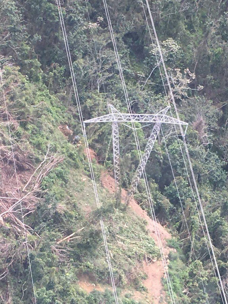 Дерево повредило ЛЭП в Пуэрто-Рико / фото twitter.com/aeeonline