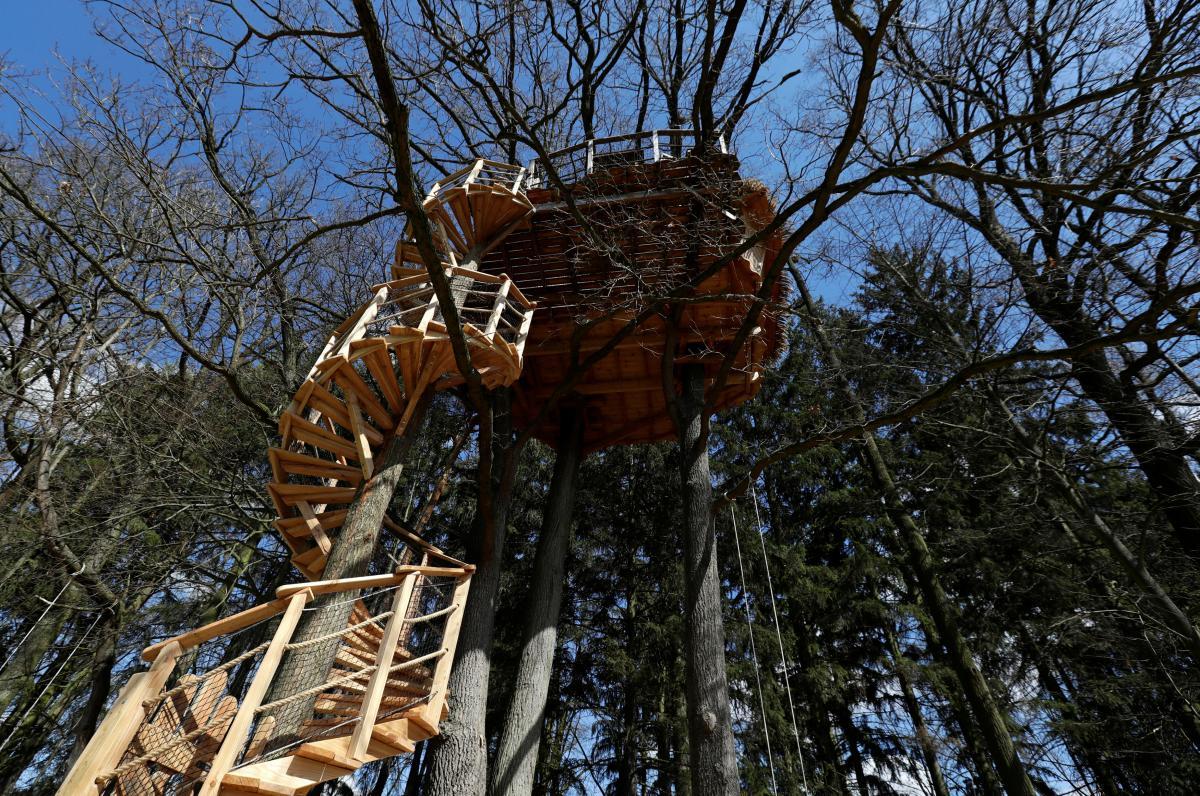 Номера на дереве в екоготелі в Green Valley Resort Chotýšany (Чехия) / Фото REUTERS
