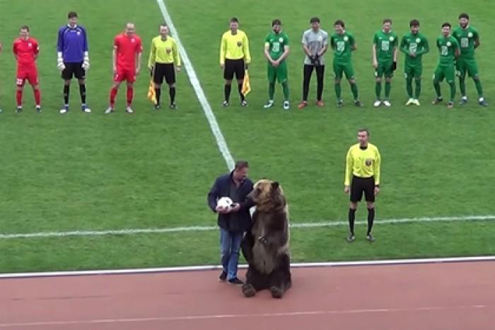 Ведмідь Тіма потренувався перед відкриттям ЧС-2018 на матчі ПФЛ / fc-angusht.ru/