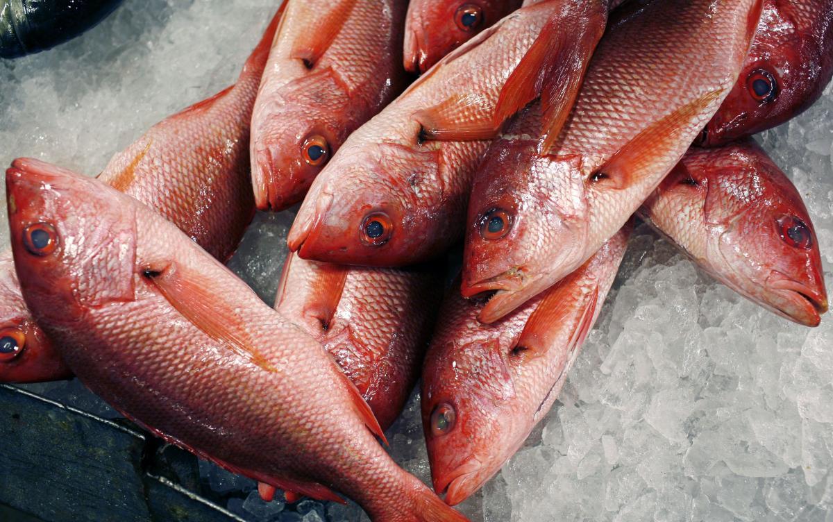 Ціни на рибу особливо не зростуть, якщо долар не буде дорожчати / REUTERS