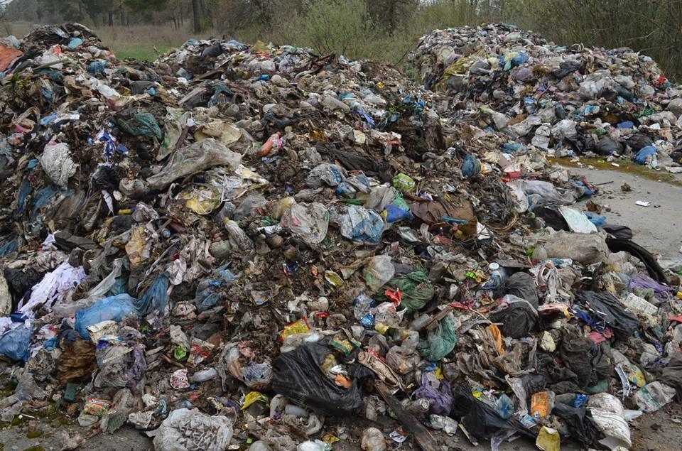 Це сміття викинули в період з 14 по 15 квітня / фото oda.zt.gov.ua