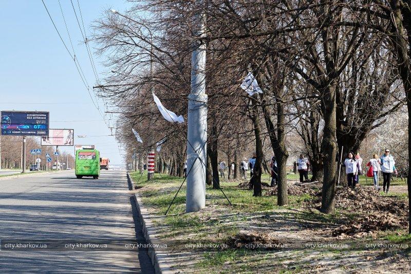 Большое внимание на этом субботнике уделили уборке территории вдоль основных магистралей / фото city.kharkov.ua