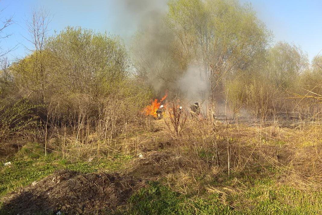 В течение суток на Харьковщине произошло 30 природных пожаров / ГСЧС