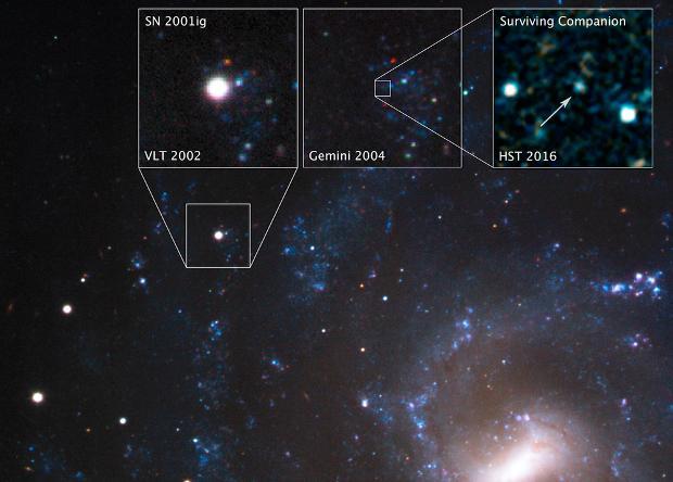 Hubble «поймал» уцелевшую после взрыва сверхновой еезвезду-компаньона