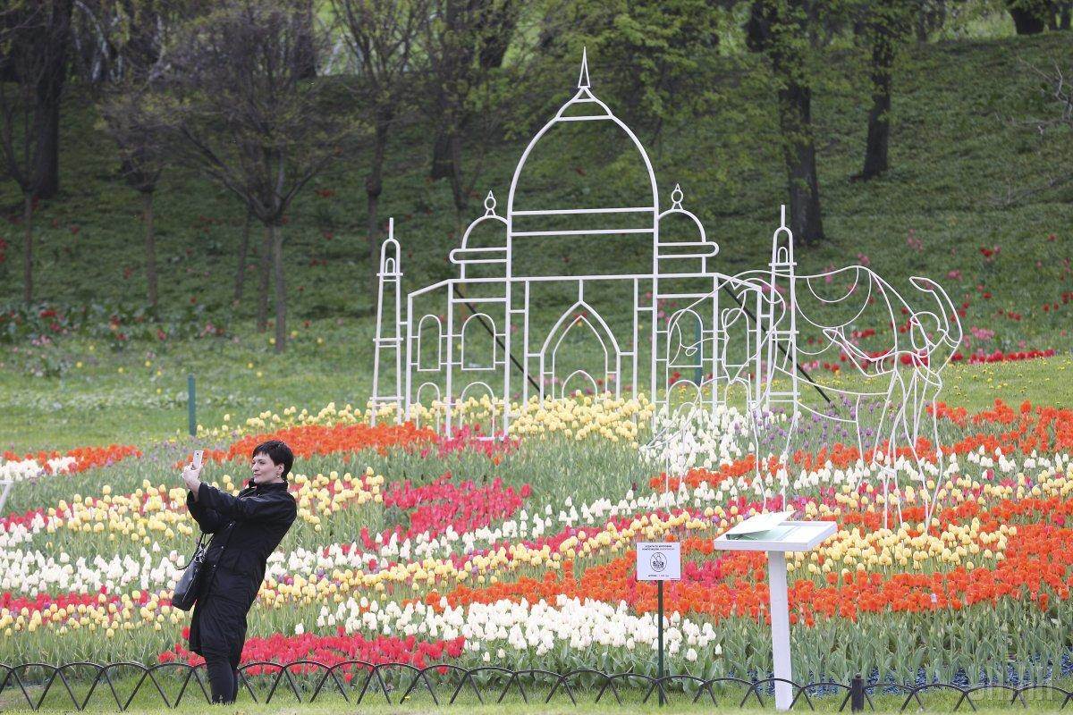 Kyiv\'s Spivoche Field hosts huge Tulip Festival (Photo) | UNIAN