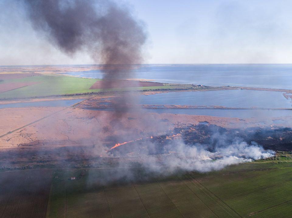 огонь среди сухой травы распространяется чрезвычайно быстро / фото Павла Пашку и Олега Марчука/Ukraїner