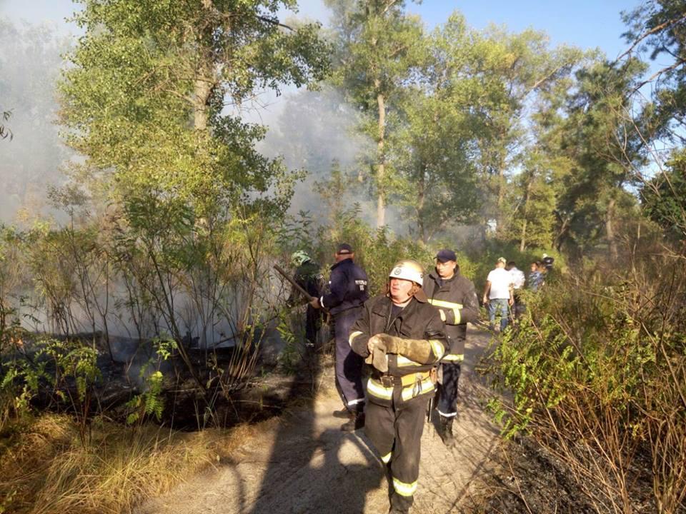 Столичные спасатели ликвидируют пожар на Трухановом острове / фото facebook.com/kievcity.gov.ua