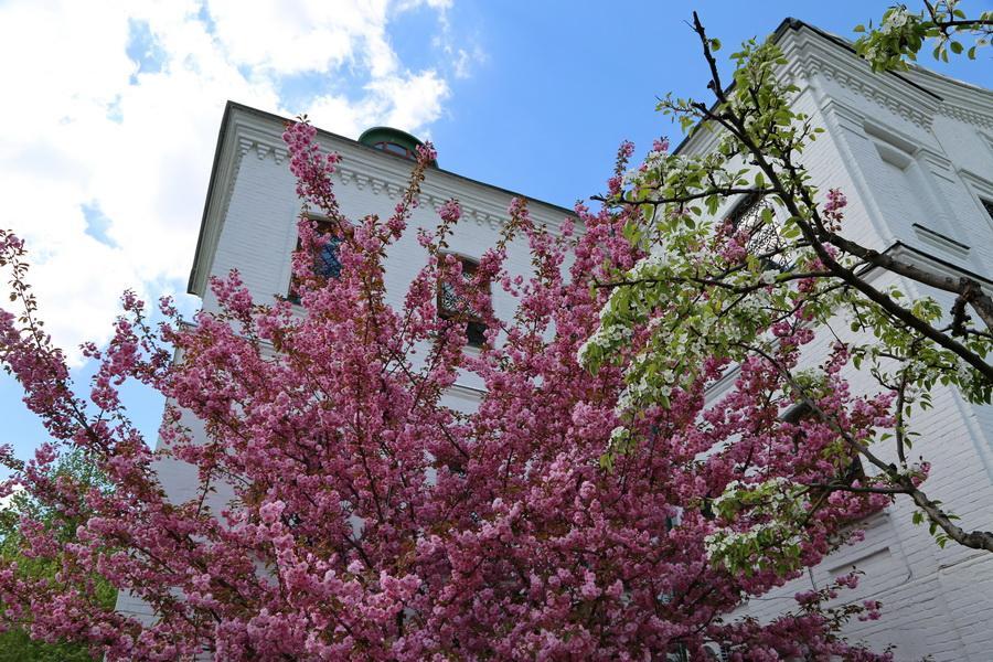 Цветы служат украшением святых храмов / lavra.ua