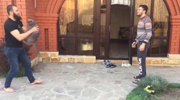 Чеченские бойцы сыграли котом вволейбол: скандальное видео
