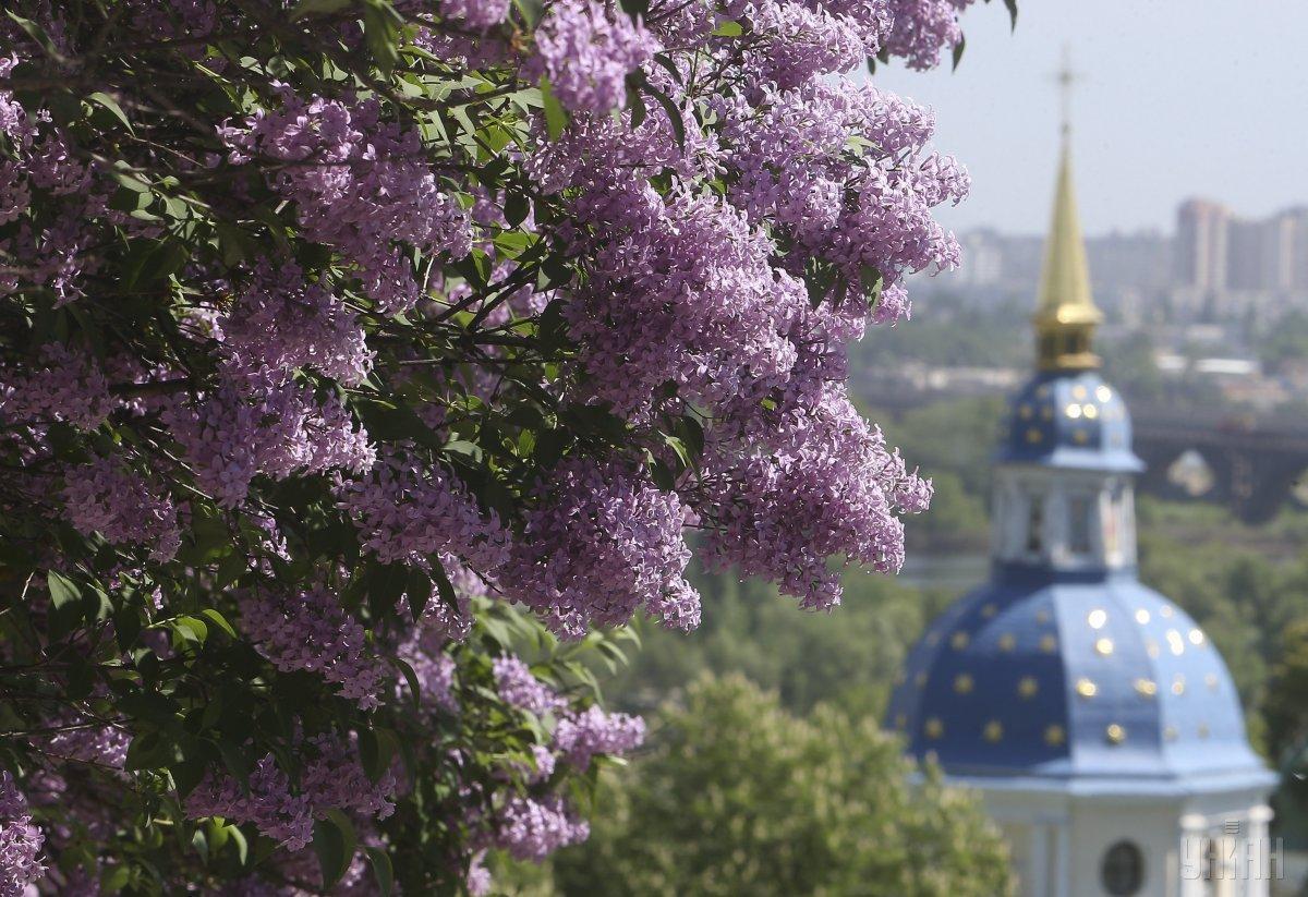 Погода весной в Украине была контрастной / УНИАН