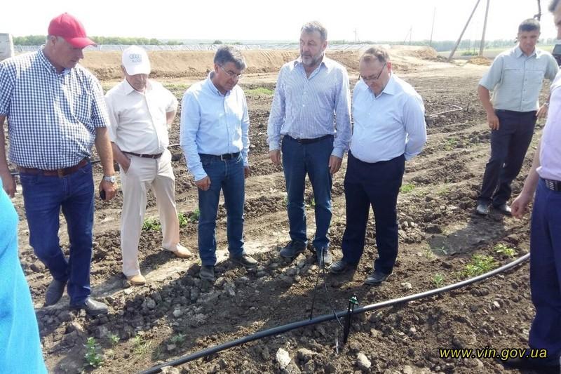 На Вінниччині успішно реалізовується інвестиційний проект по вирощуванню волоського горіха