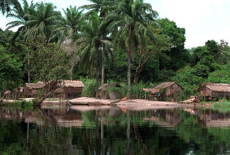 Конго, ілюстративне фото / kolizej.at.ua