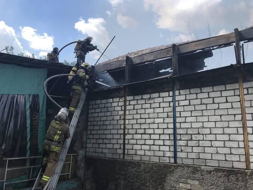 Пожар в Гидропарке / Фото dsns.gov.ua