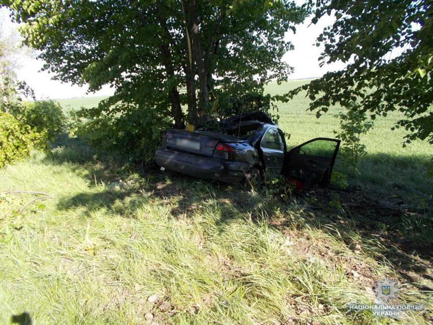 Водитель выехал на обочину и столкнулся с деревом / Фото cn.npu.gov.ua