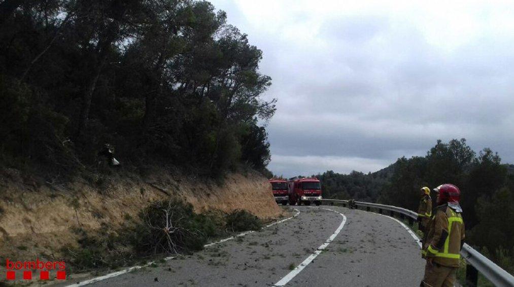 На месте падения самолета возник пожар, который оперативно потушили спасатели / фото twitter.com/bomberscat