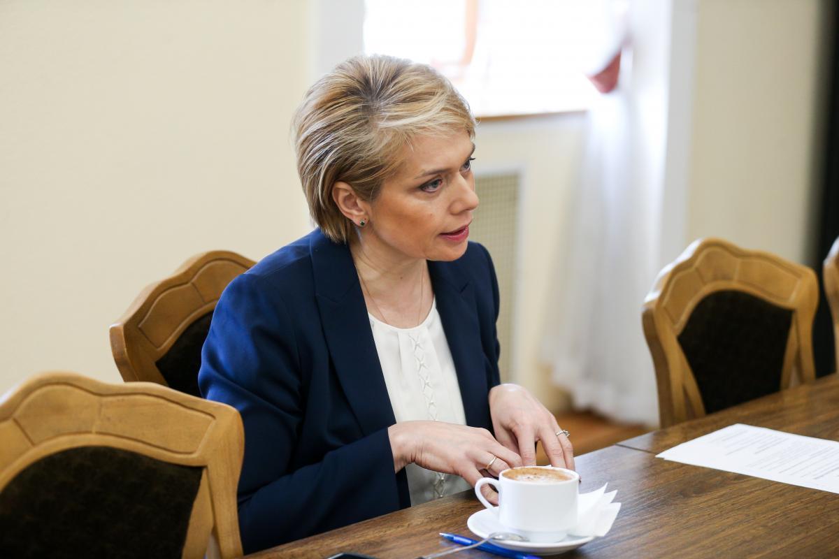 Гриневич рассказала о случае давления на одного из историков / фото УНИАН