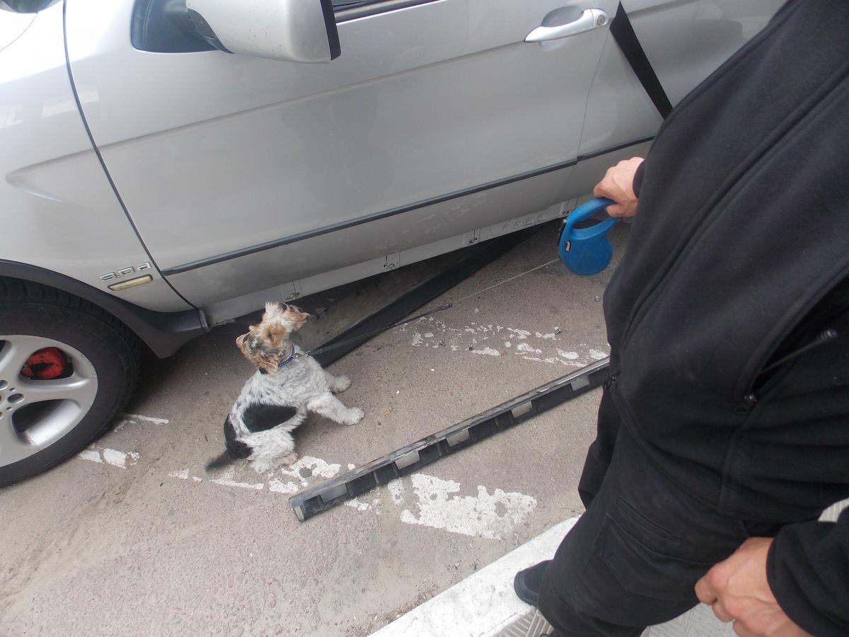 В автомобиле обнаружили специально оборудованный тайник / Фото dpsu.gov.ua