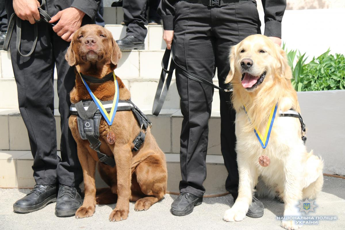 Пограничники поздравили с Днем собак / фото Нацполиция Украины