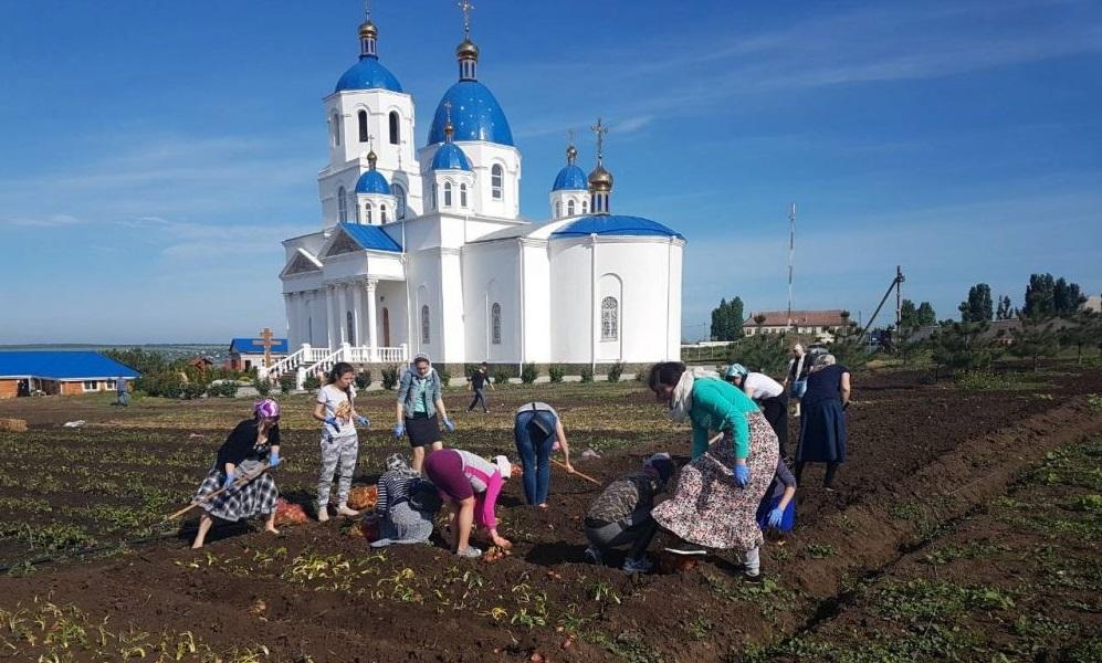 Православная молодежь Одессы провела субботник в Свято-Покровском скиту/ eparhiya.od.ua