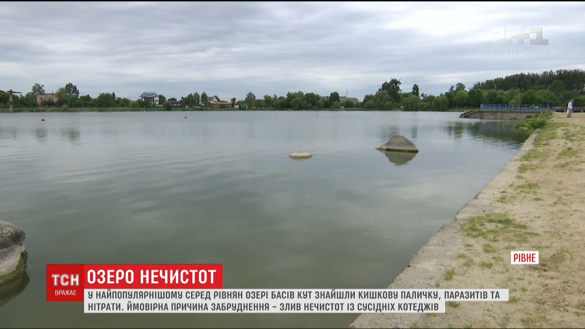 У рівненському озері знайшли нечистоти / скріншот