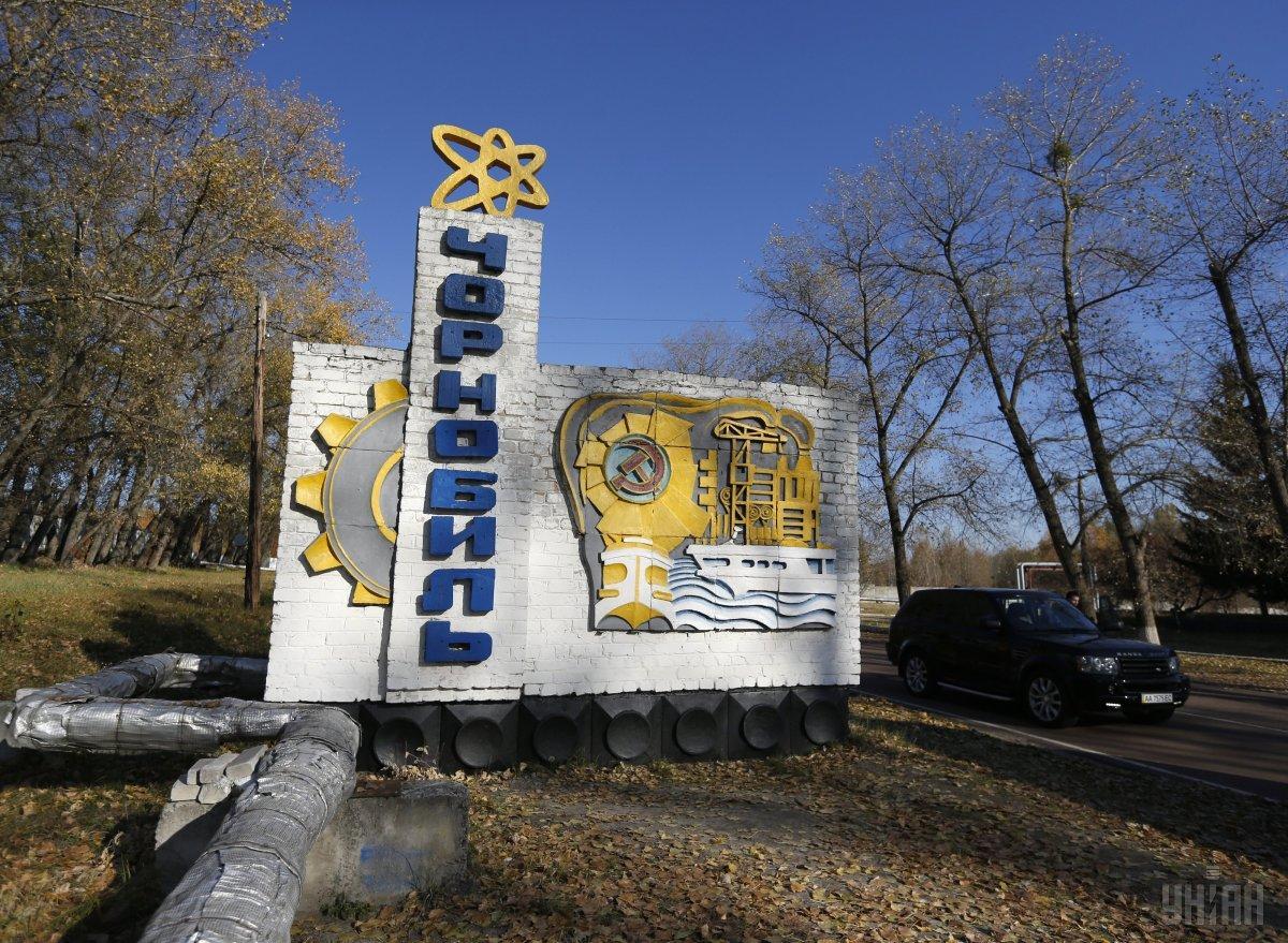 Разрастающаяся свалка поможет улучшить экологию Чернобыльской зоны / фото УНИАН