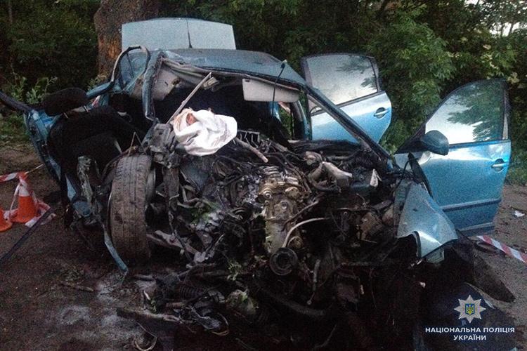 На Тернопольщине автомобиль врезался в дерево / фото tp.npu.gov.ua