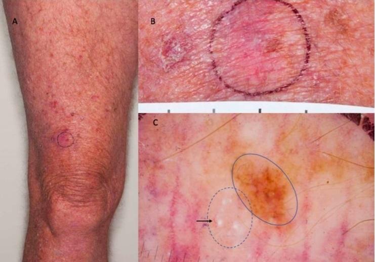 Приклад тестового зображення / фото naked-science.ru
