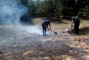 На Херсонщине произошло два лесных пожара