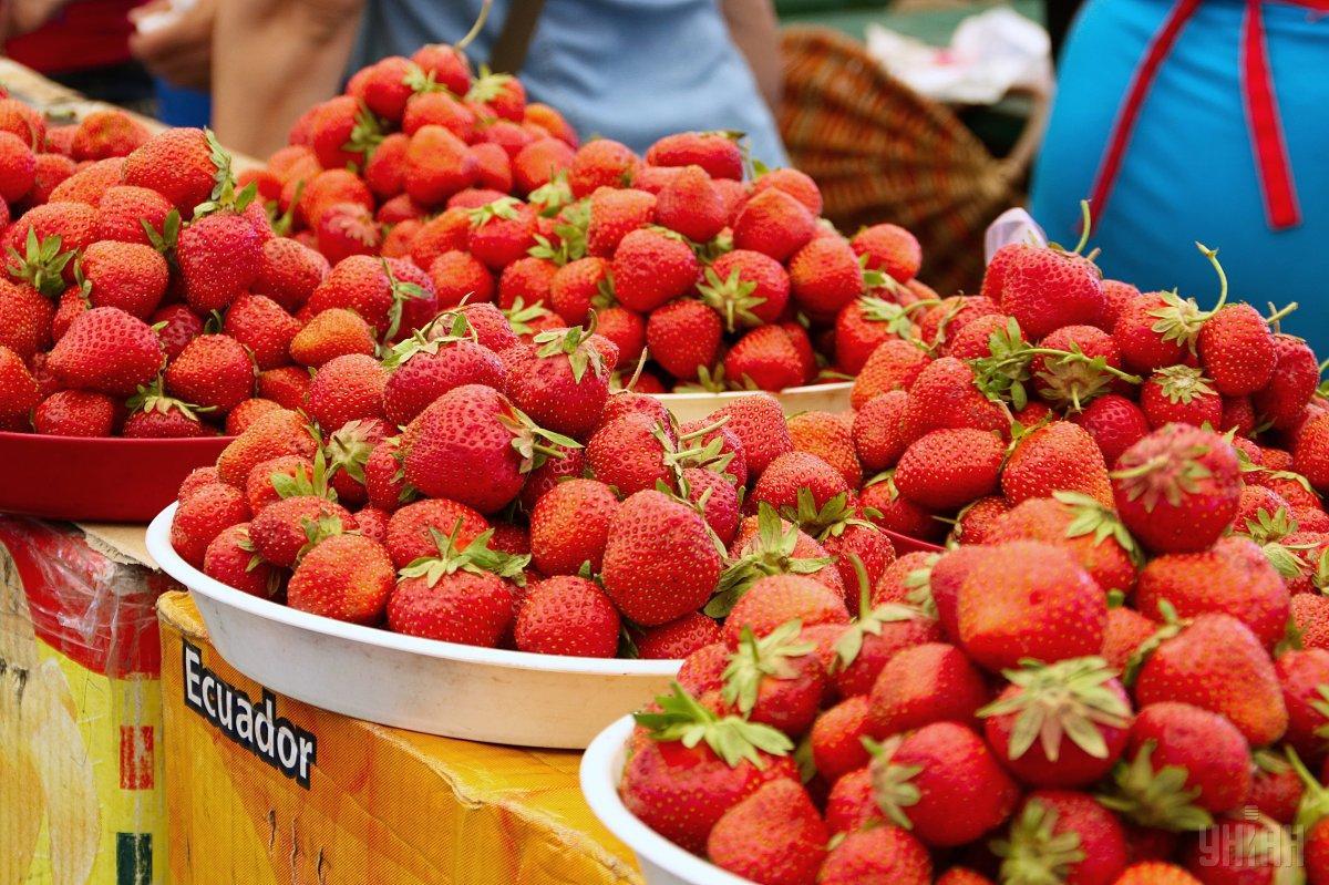 Ценители клубники во время фестиваля имеют возможность попробовать разнообразные сорта этой ягоды / фото УНИАН