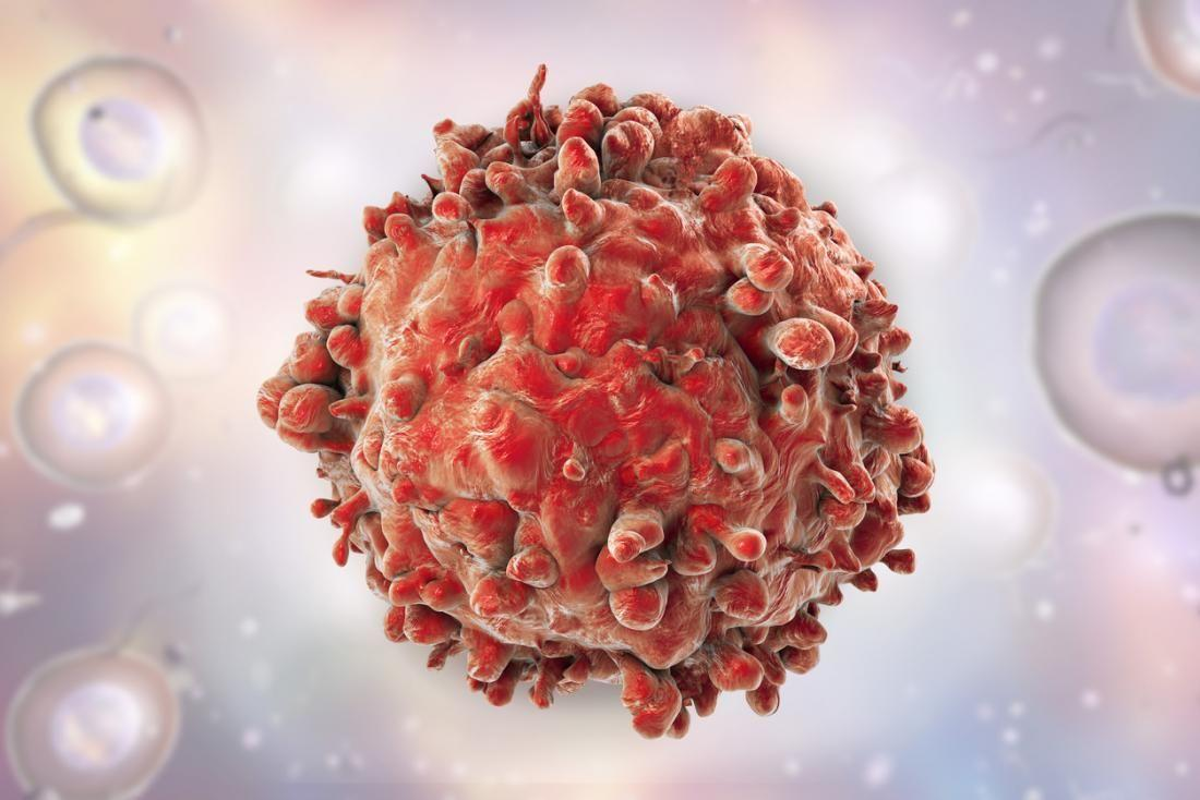 Стомлені в боротьбі з раком клітини підбадьорили / фото Naked Science