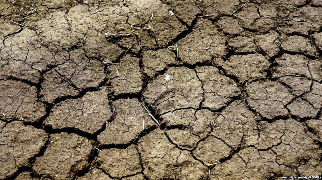 """Аннексированный Крым страдает от засухи / фото """"Крым. Реалии"""""""