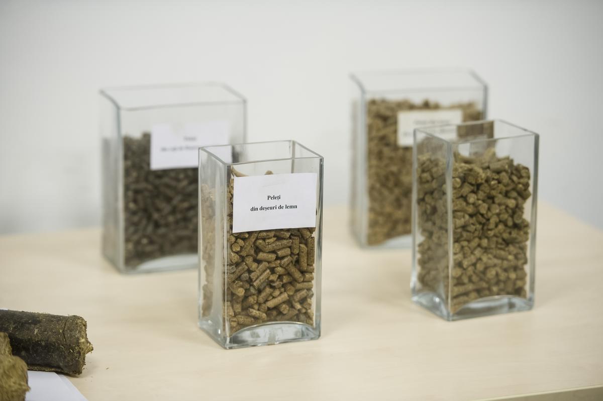 Биомасса в пеллетах / Фото EU