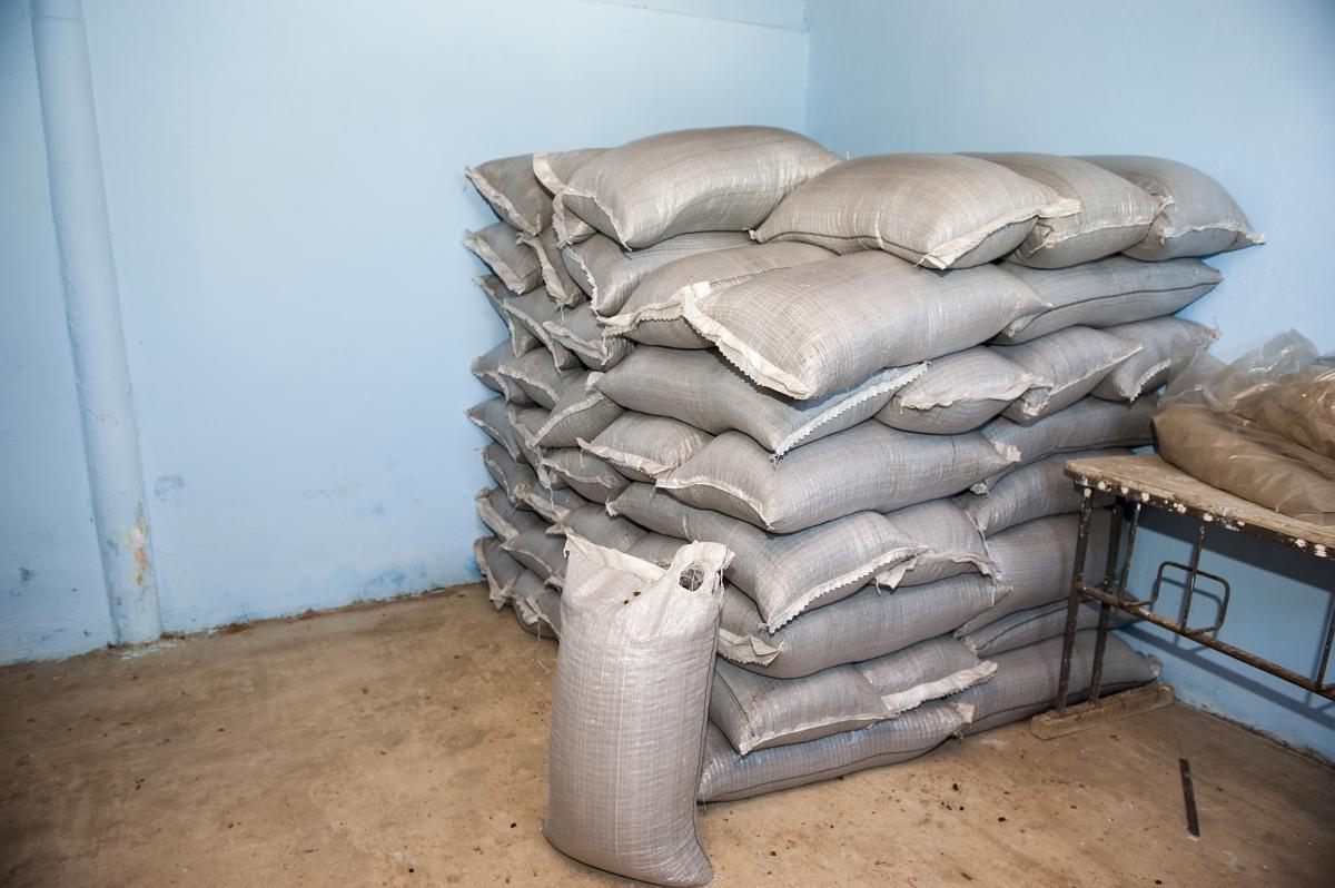 Запасы биомассы / Фото EU