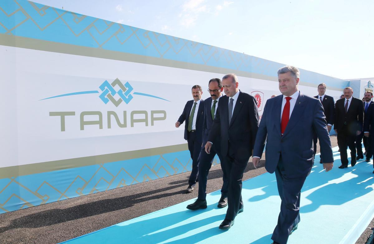 Президент Турции Тайип Эрдоган и президент Украины Петр Порошенко /REUTERS