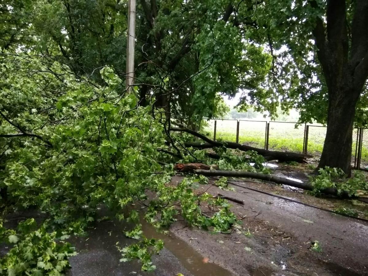 В Украине бушует непогода / ГСЧС