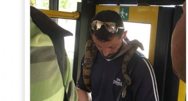 Поблизости живет мужчина, который носит сразу двух змей на шее / фото соцсети