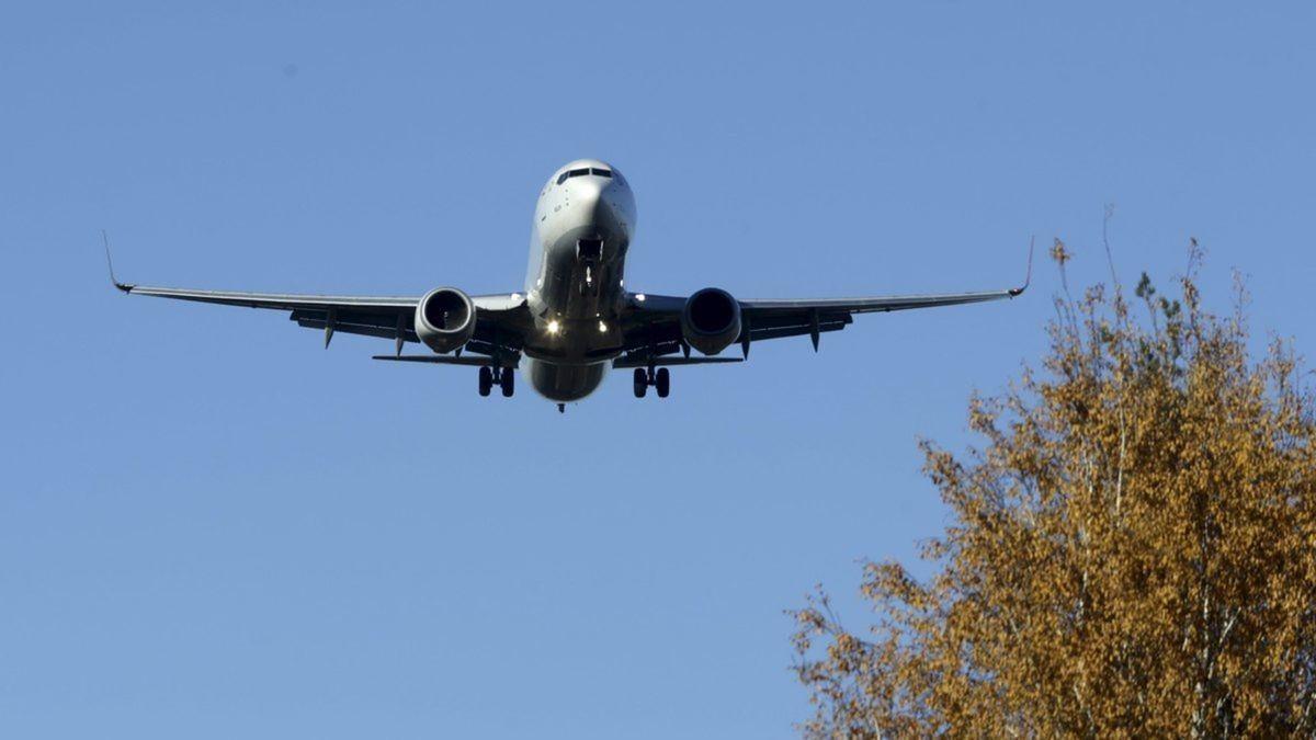 Внутрішні авіаперевезення в Україні можуть подешевшати / REUTERS