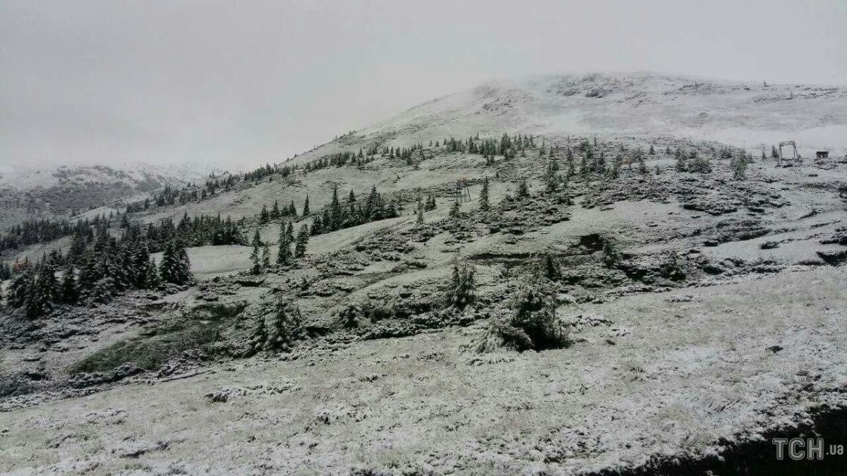 В Карпатах выпал снег / фото ТСН