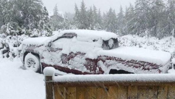 Снег в Канаде / фото instagram.com/ice_queen41