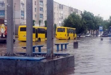 Ливень превратил улицы Бердичева в реки (видео)
