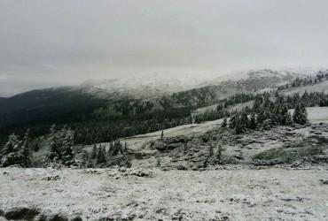 Зима посеред літа: Карпати засипало снігом (фото, відео)