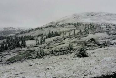 За добу високогір'яКарпат замело снігом (відео)