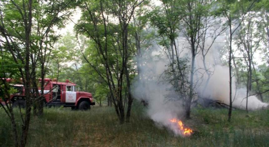 У Чорнобильській зоні рятувальники все ще гасять два вогнища пожежі площею 1,5 гектара (відео)