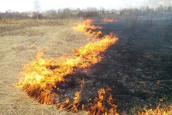 На Донетчине произошло 18 пожаров / ГСЧС